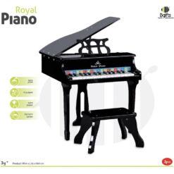 פסנתר רויאל לילדים, פיתוח קצב ומוזיקה, פיתוח החושים ותיאום עין ויד.