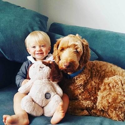 חיבוקי כלב מבית אובי דיזיין אוסטרלייה