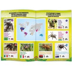 עכביש טרנטולה עם שלט מבית בוקי צרפת
